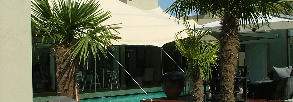 Gecko Stretch Tents and Canopies.