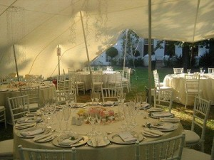 Gecko Stretch Tents & Canopies